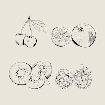 손으로 그린 과일 컬렉션 조각