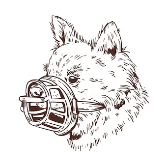 Гравюра рисованной в наморднике собаки