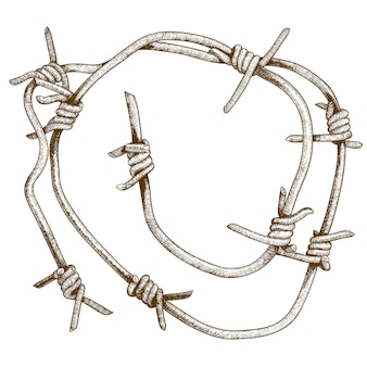 Engraving illustration of barbed wire piece