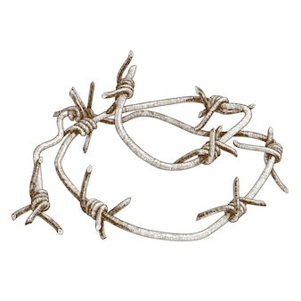 Engraving illustration of barbed wire