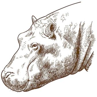 カバの頭のイラストを彫刻