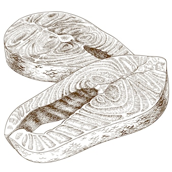 Engraving illustration of trout steak