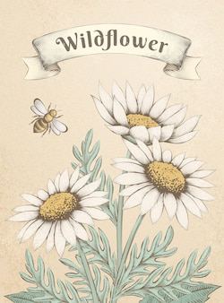 Engraving style wildflowers