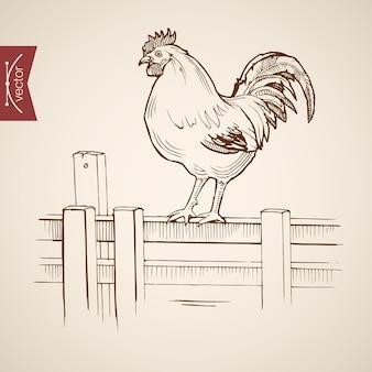 木製の柵の上に立っているヴィンテージ手描き国産コックを刻印。鉛筆スケッチ農場の鳥
