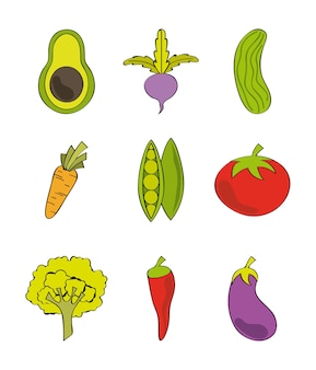 Вегетарианская еда дизайн, векторные иллюстрации eps10 графика