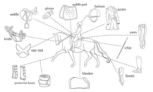 승마 스포츠 인포그래픽 말 하네스와 라이더 장비는 선 스타일의 색칠 공부 책에 있는 말을 탄 라이더의 중심에 있습니다. 교육 및 장식을 위한 벡터 삽화 세트입니다.