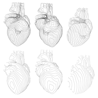 Et of outlines in the form of a heart examination