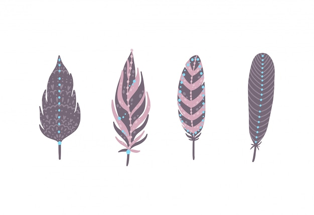Ethnic boho feathers set. feathers in vintage bohemian style.