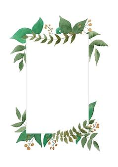 ユーカリの枝の緑の葉のフレーム。