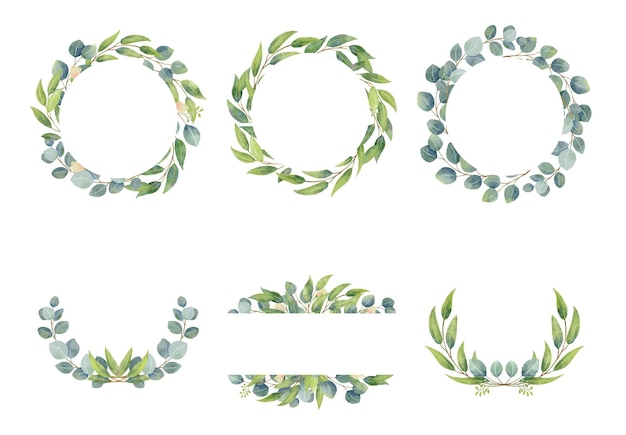 Eucalyptus branches wreaths with watercolor style  wedding greenery in circle decorative design