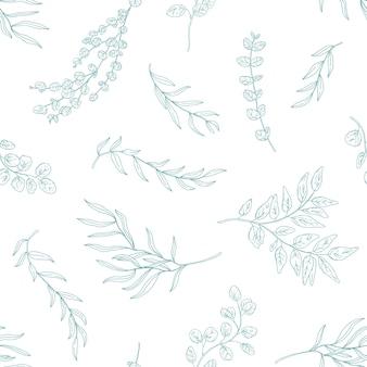 ユーカリはシームレスなパターンを残します。手描きの植物の枝や小枝。