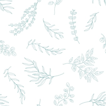 Eucalyptus leaves seamless pattern. hand drawn plant branches and twigs.