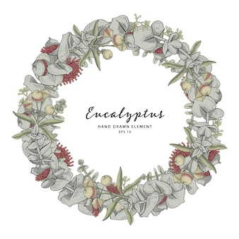 Eucalyptus plant wreath circle frame wreath