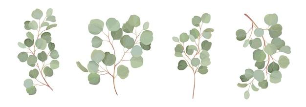 ユーカリベクトル水彩花セット。緑の葉の枝、シルバーダラーの緑、結婚式の招待状、文房具、挨拶、壁紙、ファッション、背景の自然の葉の熱帯の要素