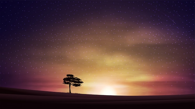 Evening landscape with orange sunset, starry cloudy sky, clean fields and alone tree on horizon.