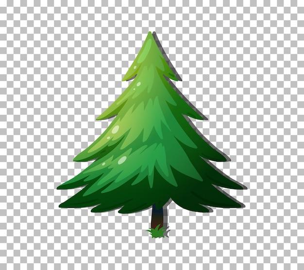투명 한 배경에 고립 된 상록 나무