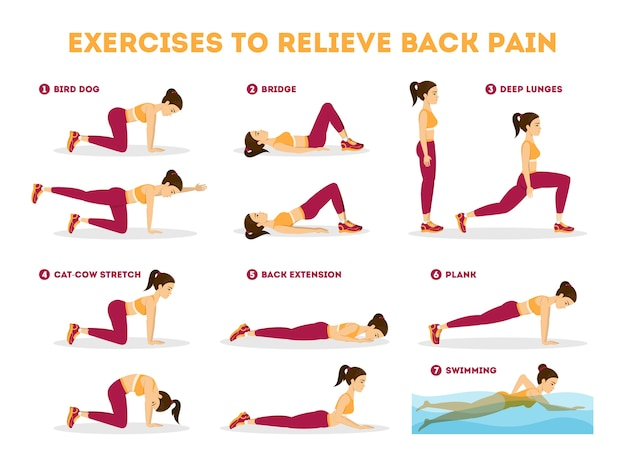 허리 통증을 완화하는 운동 세트. 스트레칭과 훈련