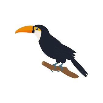Экзотическая птица африканского тукана.