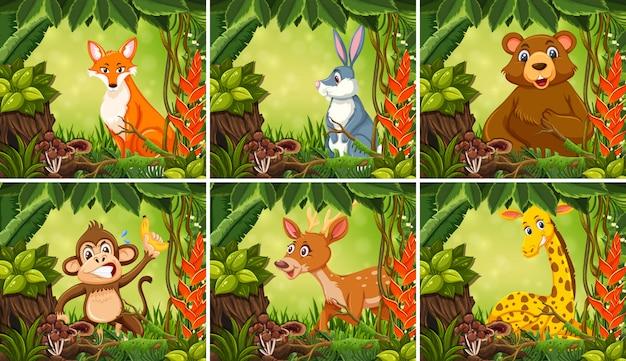 Экзотическое животное в джунглях