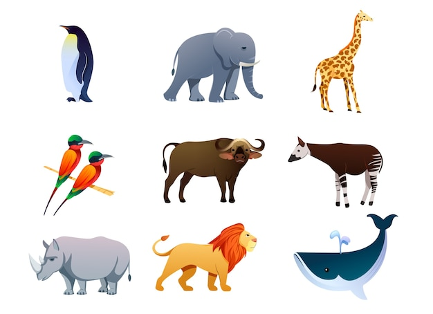 エキゾチックな動物