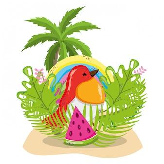 エキゾチックな鳥と夏