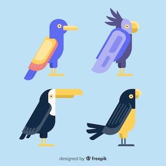Exotic bird collection flat design
