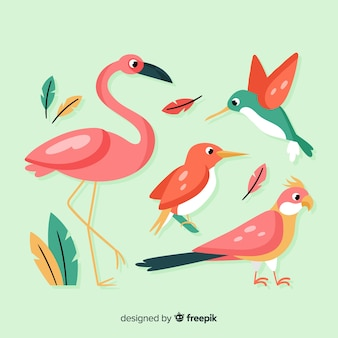 Exotic bird collection flat style