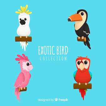Экзотическая коллекция птиц плоский стиль