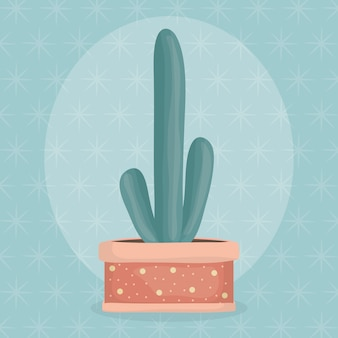 Exotic cactus plant in ceramic pot