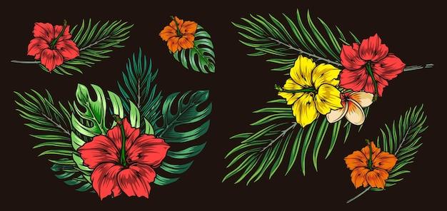 Экзотические цветочные красочные иллюстрации в винтажном стиле изолированы