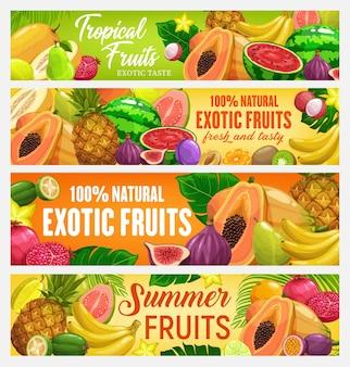 エキゾチックなフルーツとトロピカルベリーのバナー。漫画の果物