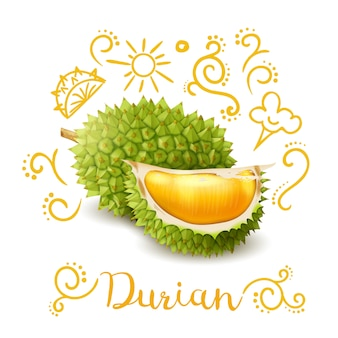 Exotic fruit durian doodles composition