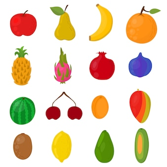 Exotic fruits hand drawn. bright berries and fruits isolated on white background. vector illustration.