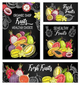 Exotic fruits posters with sketch mangosteen, papaya and figs, durian with carambola, guava, lychee, pitahaya and passion fruit
