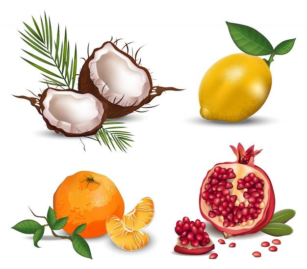 이국적인 과일 세트 컬렉션 코코넛, 레몬, 오렌지, 석류