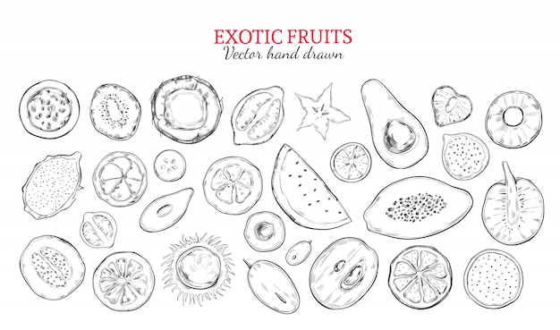 Exotic fruits and tropical berries set