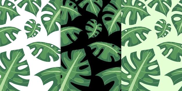Экзотические зеленые тропические пальмовые листья бесшовные модели премиум векторы