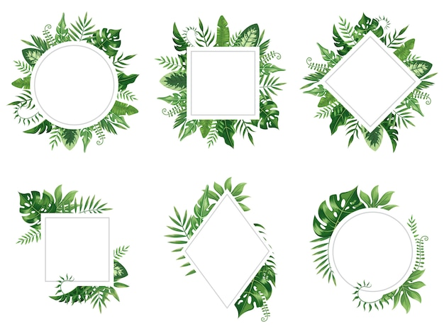 Exotic leaf frame. spring leaves card, tropical tree frames and vintage floral jungle border isolated  set