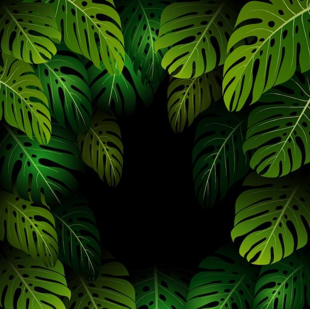 Экзотические листья монстера на темном фоне Premium векторы