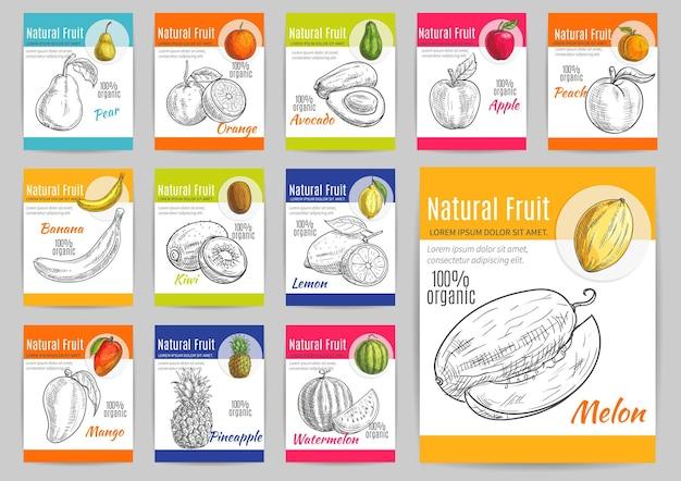 제목이있는 이국적인 천연 과일 레이블. 벡터 연필 스케치 배, 오렌지, 아보카도, 사과, 복숭아, 바나나, 키위, 레몬, 망고 파인애플 수박 멜론