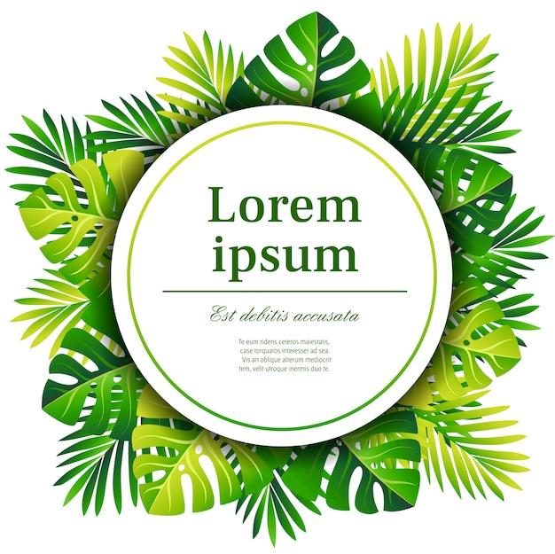 Экзотический узор. зеленые пальмовые листья. концепция карты и рекламы. белый круг с местом для текста. иллюстрация на белом фоне
