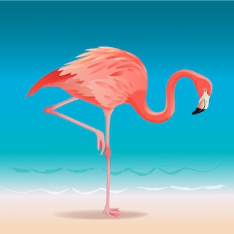 Exotic pink flamingo walking on the hot summer beach.