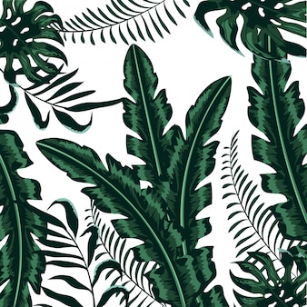 Exotic plants branches nice leaves