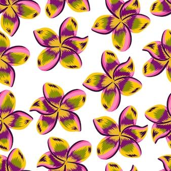 Exotic plumeria seamless pattern isolated on white background.