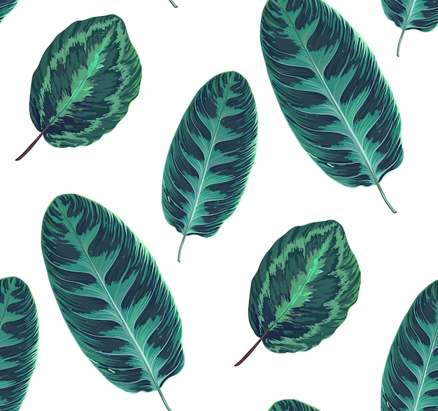 Exotic seamless pattern with leaves of tropical jungle plants