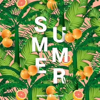오렌지와 이국적인 여름 배경
