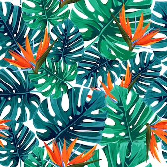 Exotic tropical background.