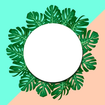 Exotic tropical green leaves monstera. paper banner.