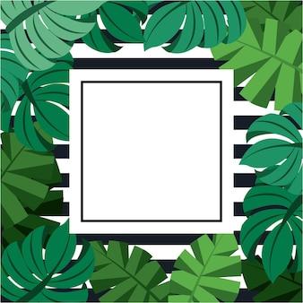 야자수 몬스 테라 잎 이국적인 열 대 정글 프레임