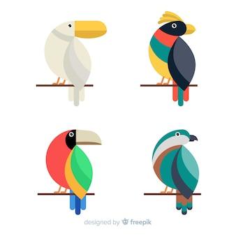 Коллекция экзотических тропических диких птиц